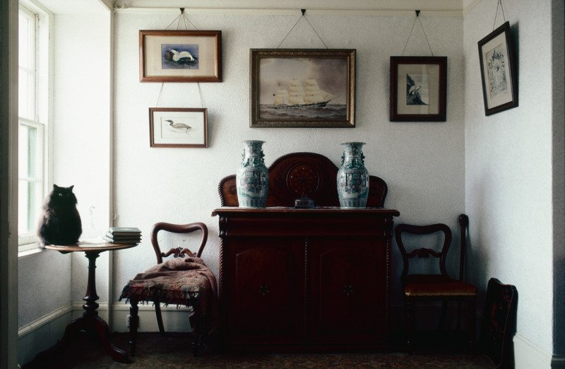 'Captain Jock's' drawing-room with Paddy the cat, at 9 Alfred Street. The wildlife paintings are by J. G. Millais.  © Estate of Keith Allardyce